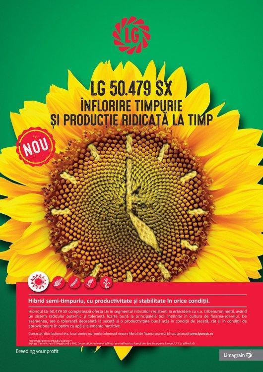 Hibrizi noi de floareasoarelui în portofoliul Limagrain