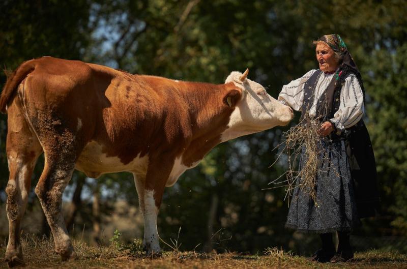 Dor de Viscri  primul album fotografic dedicat celui mai îndrăgit sat din România a fost lansat