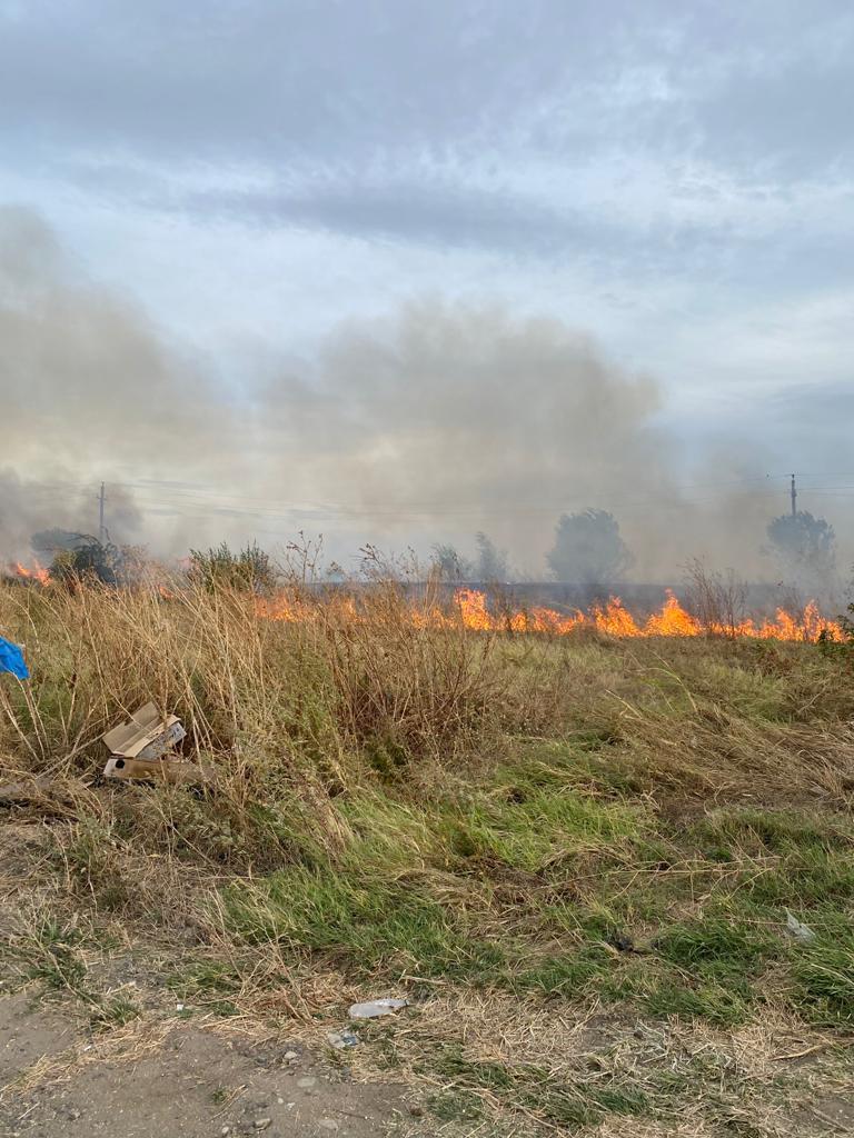 Jurnaliștii cotidianului Jurnal giurgiuvean au semnalat izbucnirea unui incendiu de miriste