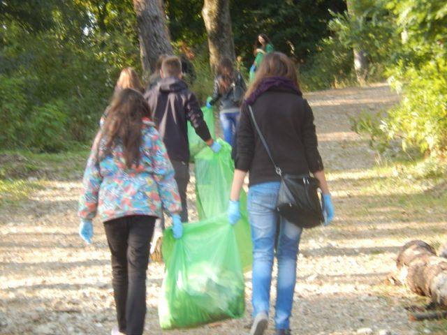 Campanie de ecologizare  Let</div> <span class=
