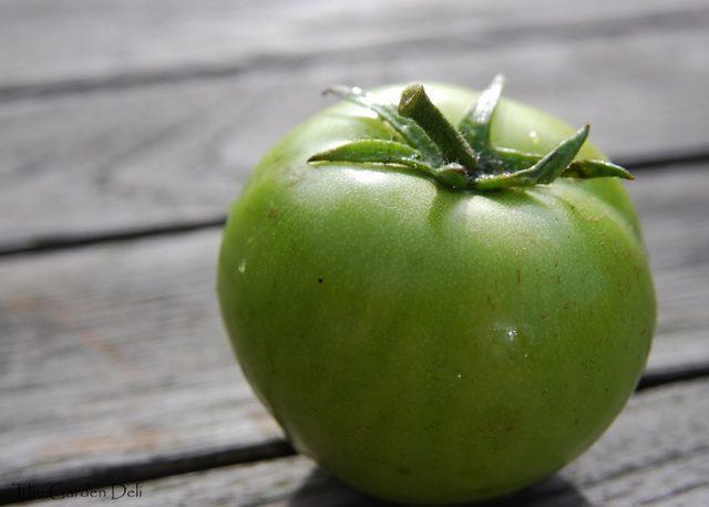 Roșia  bună încă de când e verde