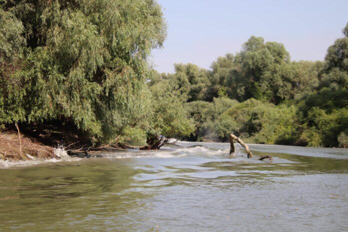 Scăldatul interzis în râuri