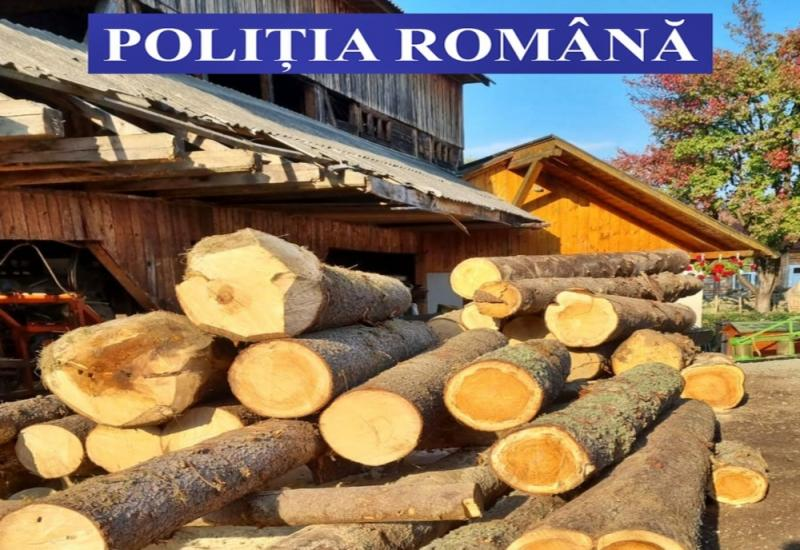 FOTO Peste 28 mc de lemn confiscat și amenzi de 18000 lei aplicate de polițiștii de la Combaterea Delictelor Silvice