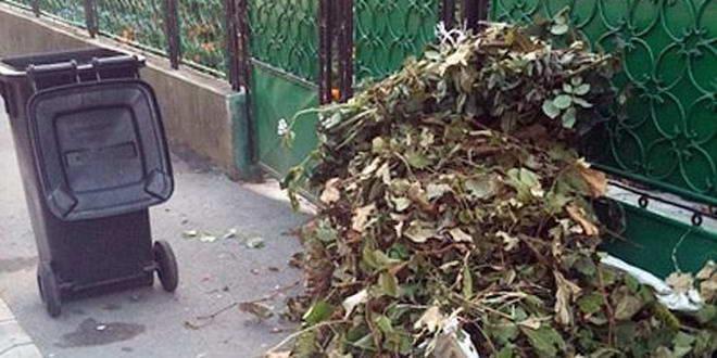 În ce condiții ridică ADP deșeurile vegetale de la populație  cetățenii îndemnați să colecteze selectiv programul ridicărilor