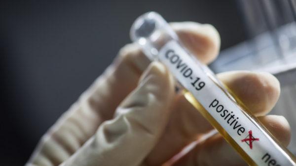 136 de noi infectări cu coronavirus în județul Suceava Crește la 5388 numărul cazurilor noi în țară 97 de decese asociate COVID