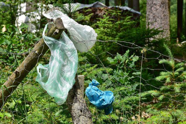 Obiceiuri mici care ne ajută să economisim bani și să reducem consumul de plastic